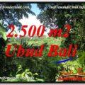 2,500 m2 LAND FOR SALE IN UBUD BALI TJUB605