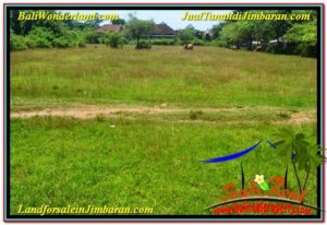 Beautiful PROPERTY 8,000 m2 LAND FOR SALE IN Jimbaran Ungasan TJJI109