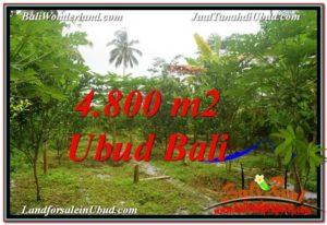 Affordable PROPERTY UBUD LAND FOR SALE TJUB571
