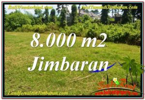 Beautiful PROPERTY 8,000 m2 LAND IN Jimbaran Ungasan FOR SALE TJJI109