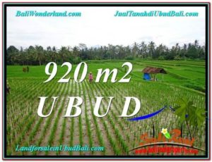 FOR SALE Affordable LAND IN Ubud Payangan BALI TJUB575