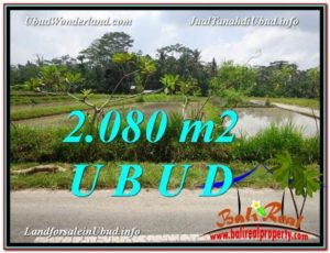 LAND IN Ubud Pejeng BALI FOR SALE TJUB582