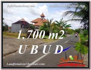 1,700 m2 LAND SALE IN UBUD TJUB588