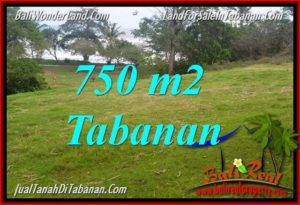 Beautiful LAND FOR SALE IN TABANAN TJTB346