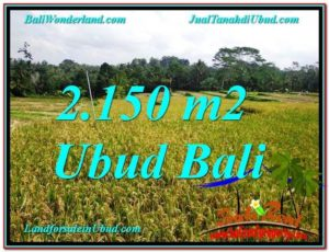 Affordable 2,150 m2 LAND FOR SALE IN UBUD TJUB606