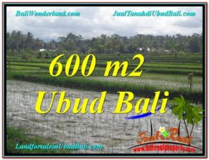 Affordable 600 m2 LAND IN UBUD BALI FOR SALE TJUB607