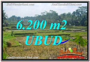Affordable PROPERTY UBUD LAND FOR SALE TJUB631