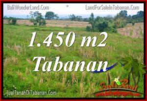 Affordable 1,450 m2 LAND SALE IN TABANAN BALI TJTB343