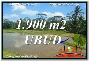 Beautiful LAND IN UBUD FOR SALE TJUB629