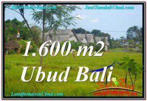 Exotic PROPERTY LAND SALE IN UBUD TJUB633