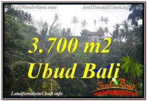 3,700 m2 LAND SALE IN UBUD TJUB640