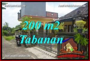 Magnificent LAND SALE IN Tabanan Penebel TJTB359