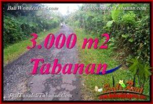 FOR SALE Exotic PROPERTY 3,000 m2 LAND IN Tabanan Selemadeg BALI TJTB366