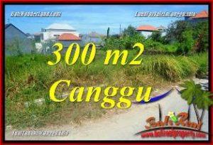 Exotic PROPERTY 300 m2 LAND FOR SALE IN CANGGU BRAWA TJCG225