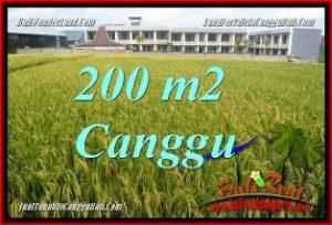Magnificent CANGGU LAND FOR SALE TJCG229