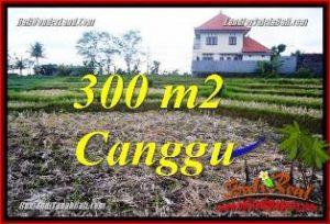 LAND FOR SALE IN CANGGU PERERENAN BALI TJCG230
