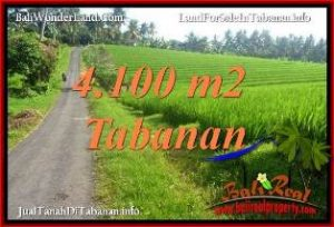 Magnificent LAND SALE IN TABANAN TJTB394