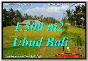 Magnificent PROPERTY 1,500 m2 LAND SALE IN UBUD TEGALALANG TJUB668