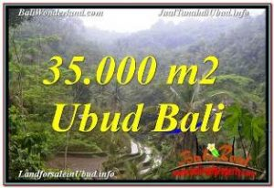 Exotic PROPERTY UBUD BALI LAND FOR SALE TJUB674