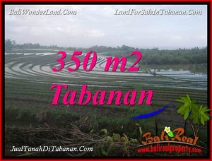 FOR SALE Beautiful LAND IN TABANAN BALI TJTB386