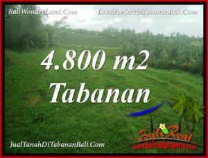 FOR SALE Beautiful 4,800 m2 LAND IN TABANAN TJTB387