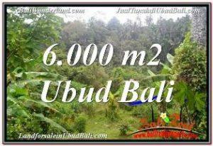 Exotic PROPERTY LAND SALE IN UBUD TJUB682