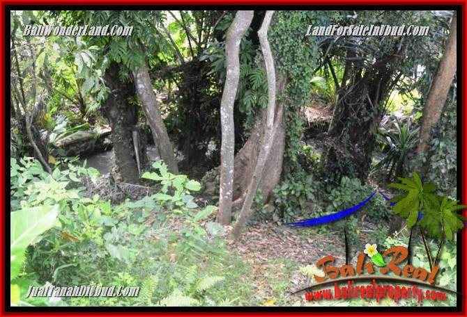 Affordable Property 840 m2 Land in Lod Tunduh for sale TJUB685