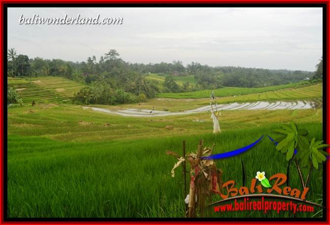 Magnificent Property Land for sale in Tabanan Bali TJTB396