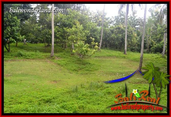 Affordable 13,250 m2 Land for sale in Tabanan Bali TJTB403