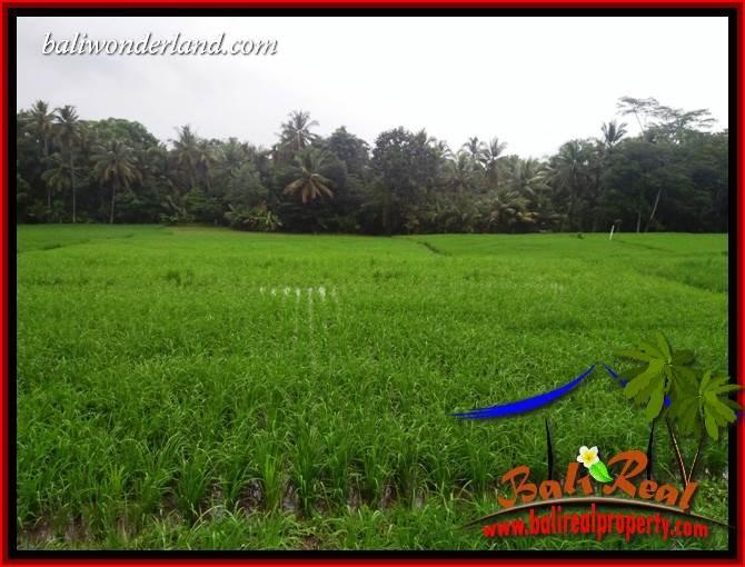 FOR sale Exotic Land in Tabanan Kerambitan Bali TJTB404