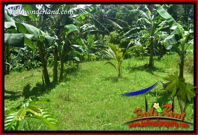 Exotic Property 5,550 m2 Land for sale in Tabanan Selemadeg TJTB405