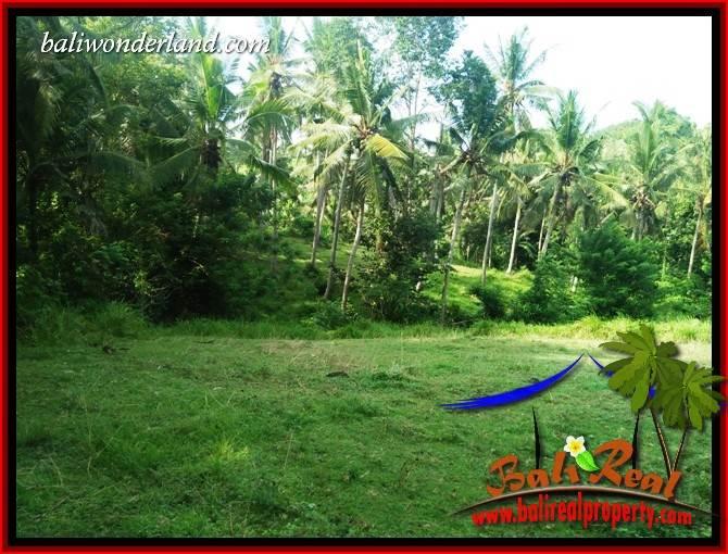 Affordable Tabanan Bali 3,300 m2 Land for sale TJTB413