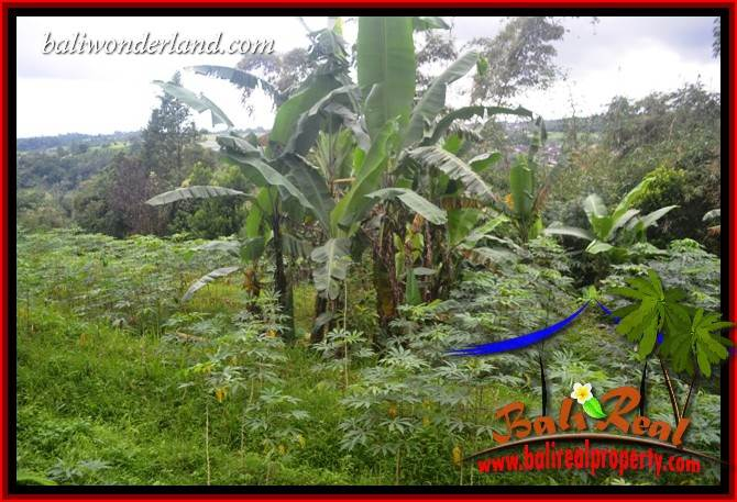 FOR sale Exotic 6,500 m2 Land in Tabanan Bali TJTB416